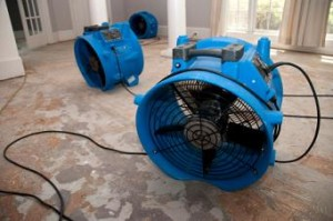 water-damage-service-gold-coast